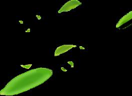 漂浮元素绿叶