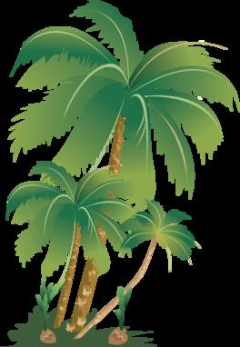 椰子树网页png素材