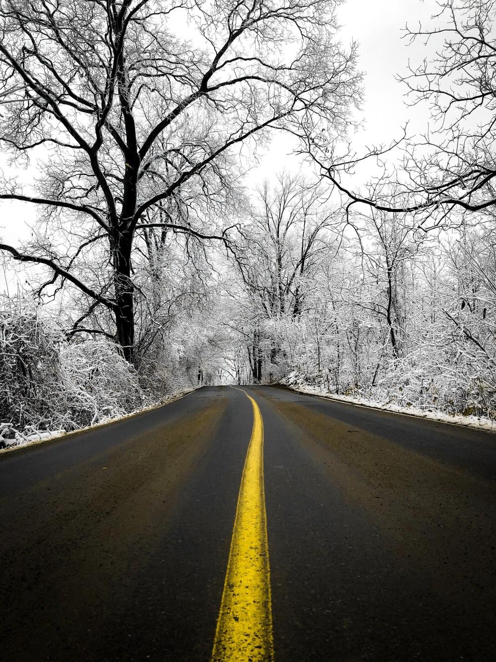 雪地里的路